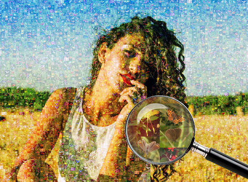 Фотомозаика девушка из бабочек - Сказка в раме - skazkavrame.ru